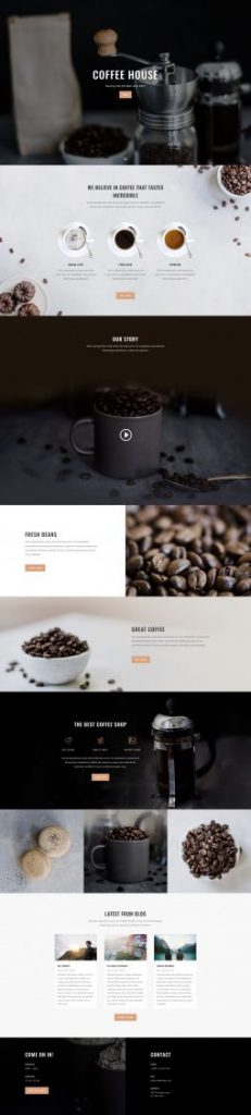 Web Design 15