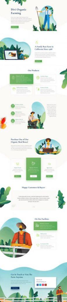 Web Design 45