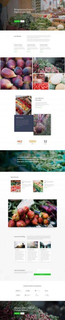 Web Design 38
