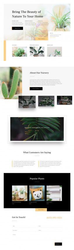 Web Design 125